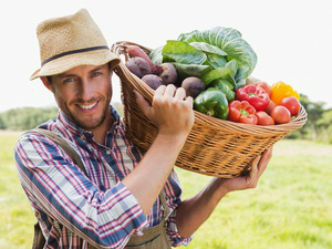 Organic Food, Meat, Eggs and Produce, CSAs, and Raw Milk for