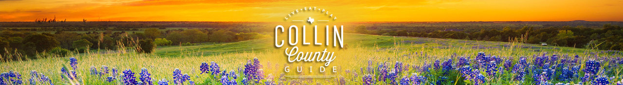 Collin County Guide, What To Do in Collin County