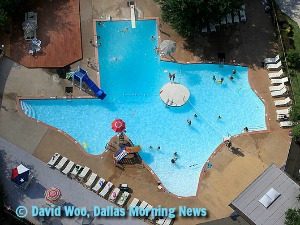 The Texas Pool, Plano TX
