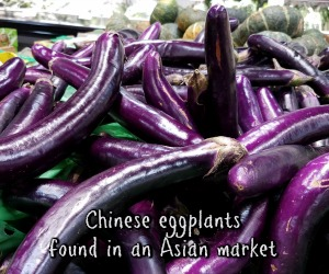 Chinese eggplant in Frisco TX