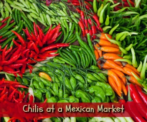 chilis at a Mexican market in Plano TX
