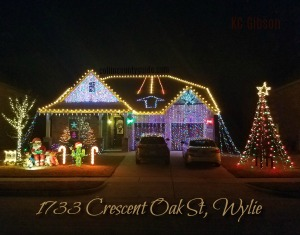 1733 Crescent Oak Wylie Christmas Lights